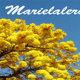 Unidad de Consciencia, Adherencia Vibratoria y Energía electrofísica - Marielalero (4-4-2014)