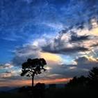 Radionovela: Al Sur del Camposanto