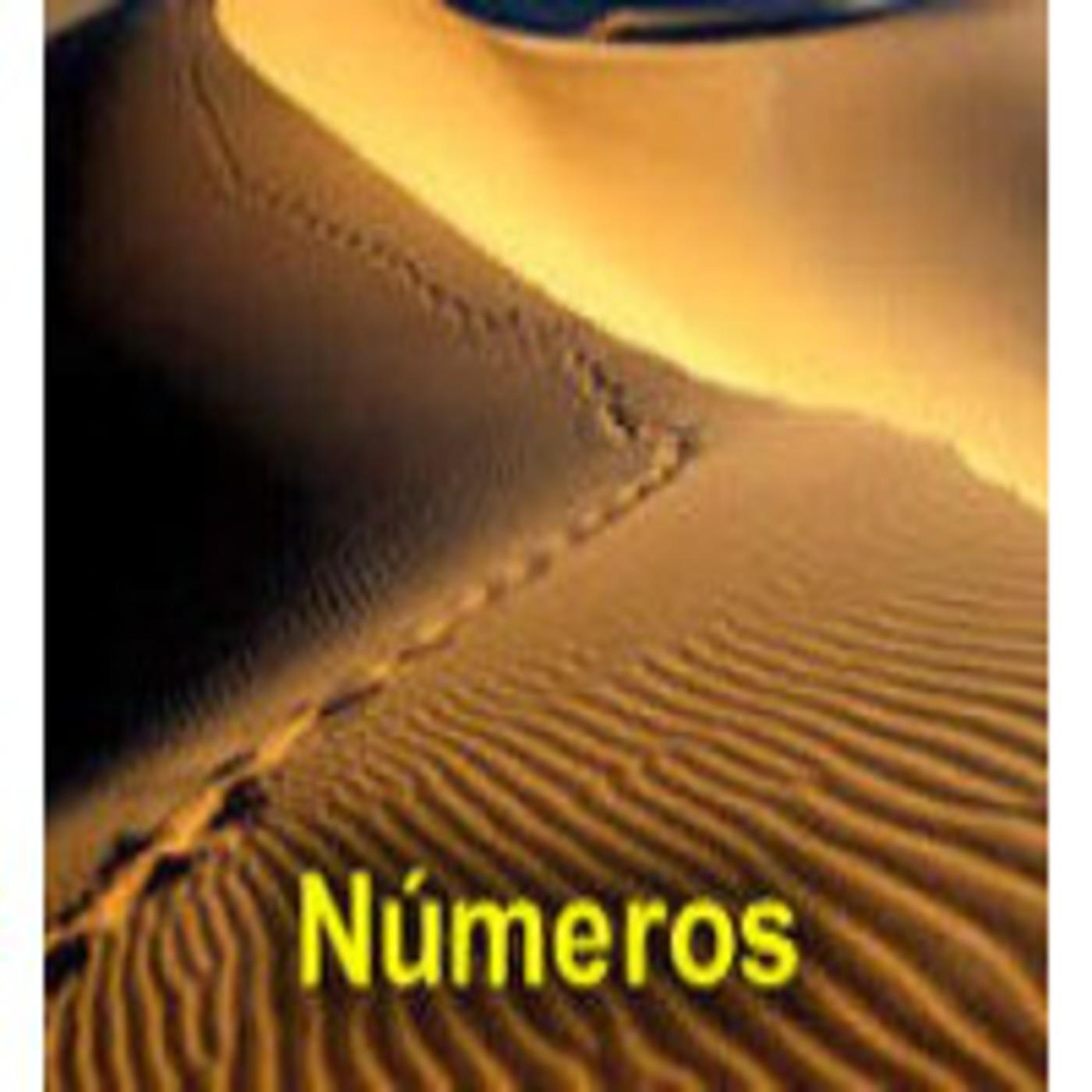 Números. Biblia en Audio.