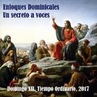Un secreto a voces. Domingo XII del Tiempo Ordinario.