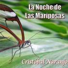 La Noche de las Mariposas (26 de Mayo de 2016)