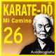 571 | Karate-Do, Mi camino 26x30 (violando una regla)