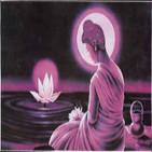 Vipassana y el Dhamma. Fe en la práctica