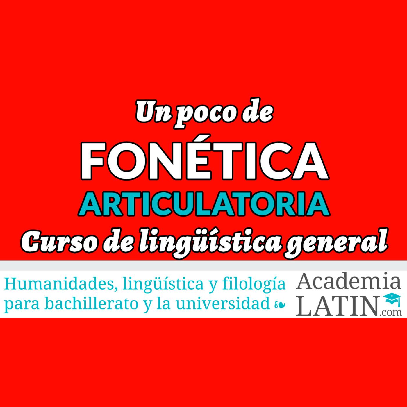 Fonética articulatoria ‹ Curso de lingüística general en