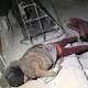 AltNews 16/04/2018 | ¿Fue el ataque químico un ataque de falsa bandera? Analizamos ataque a Siria