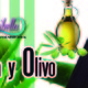 Nutribella - SÁBILA Y OLIVO