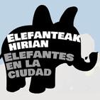 'Elefantes en la ciudad', descubre la biodiversidad pétrea de Donostia