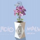 Maratón XX años Radio Malva: Flor de verano