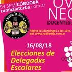 Emergencia educativa y elecciones de delegadxs - ovejas negras