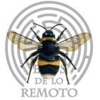 Alarma por insectos propagando virus ¿podrían ser armas? / La extinción de la abeja - Ecos de lo remoto 3x06