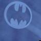 Happy Batman Day !!!!