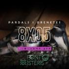 FONT DE MISTERIS T8P05- ENIGMES DE LES ORONETES I ALTRES OCELLS- Programa 280| IB3 Ràdio