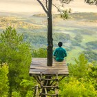Conferencia y meditación: la experiencia del observador desapegado y compasivo