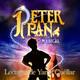 Cap. 14-Peter Pan: El barco de los Piratas