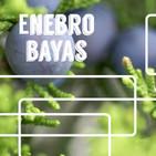 Nutribella - ENEBRO BAYAS