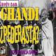 ¿Fue Muhatma Ghandi racista, pederasta y titere británico? con Rosalia Sanz
