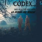 CODEX 5X63 La cabaña del bosque