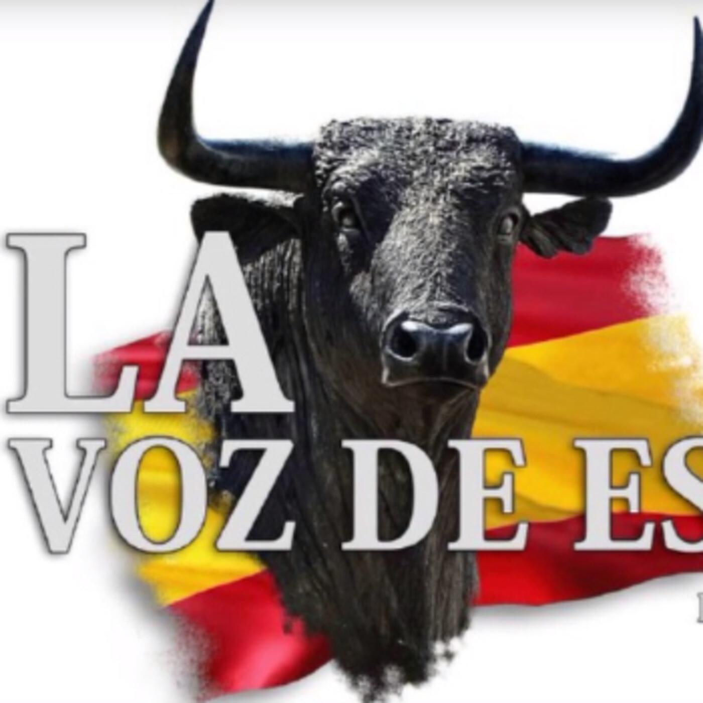 LA VOZ DE ESPAÑA Ed: 208 (9 de Abril)