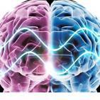 Sincronicidad de Hemisferios cerebrales y entrevista a Chus Navarro