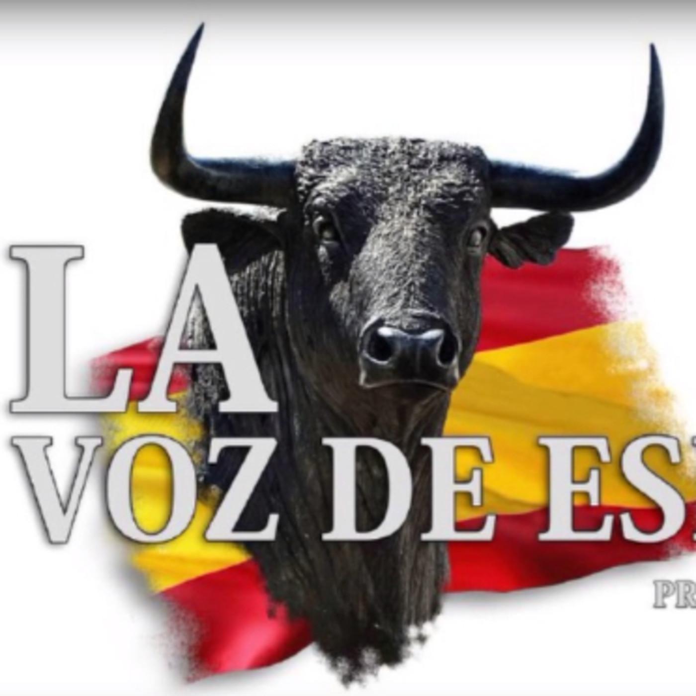 LA VOZ DE ESPAÑA Ed: 233 (21 de Mayo)