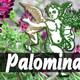 El Ángel de tu Salud - PALOMINA