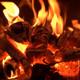 239. Enseña a tus hijos a hacer fuego