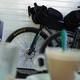 Bicis - Por qué no llevan 12v las Gravel Bikes?