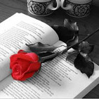 S2E08: Sagas Literarias (Especial Día del Libro)