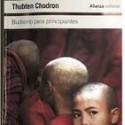 Budismo principiantes - Cómo afrontar las emociones