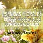 Esencias florales, Cursos presenciales, Semipresenciales online - José Salmerón y Laure Ferrié