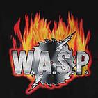 Programa Nº14-W.A.S.P.-