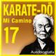 562 | Karate-Do, Mi camino 17x30 (espíritu de fuego)