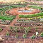 Agricultura colectiva: Soluciones para desafíos sociales y ambientales