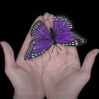 Voces del Misterio LEGENDARIOS Rne 024: La leyenda de la mariposa milagrosa de Asturias