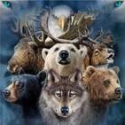 Meditación con los Devas y tu animal totem con Gloria Alonso