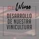 El desarrollo de nuestra vinicultura