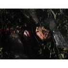 Instinto Asesino (Temporada 3 - 1de9): Furia en Caracas