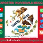 Que es Targeted Individuals Mexico?