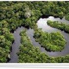 Proyecto InfoAmazonía: Gestión integral de la información de la Amazonía Andina