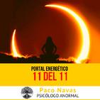 Portal Energético 11 del 11