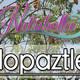 Nutribella - ZOPILOPAZTLE
