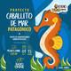 T02E10. Proyecto Caballito de Mar Patagónico