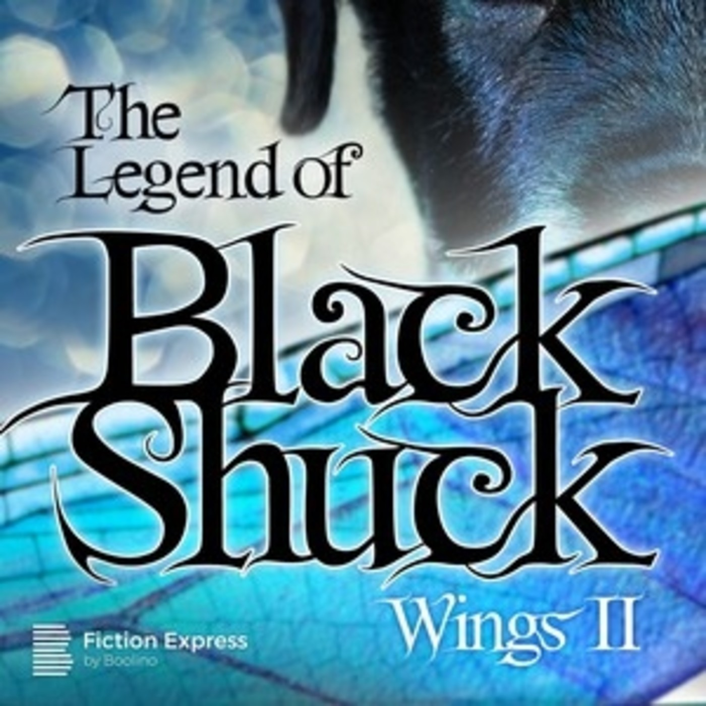 The legend of Black Shuck. Chapter 2. The Force