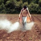 Plaguicidas: Percepciones de su uso en comunidades rurales de los Altos de Chiapas / Hector Ulises Bernardino Hernandez