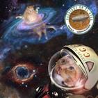 Perdidos En El Éter #335: Cosas Del Espacio - Turismo Espacial & Gatos En Microgravedad