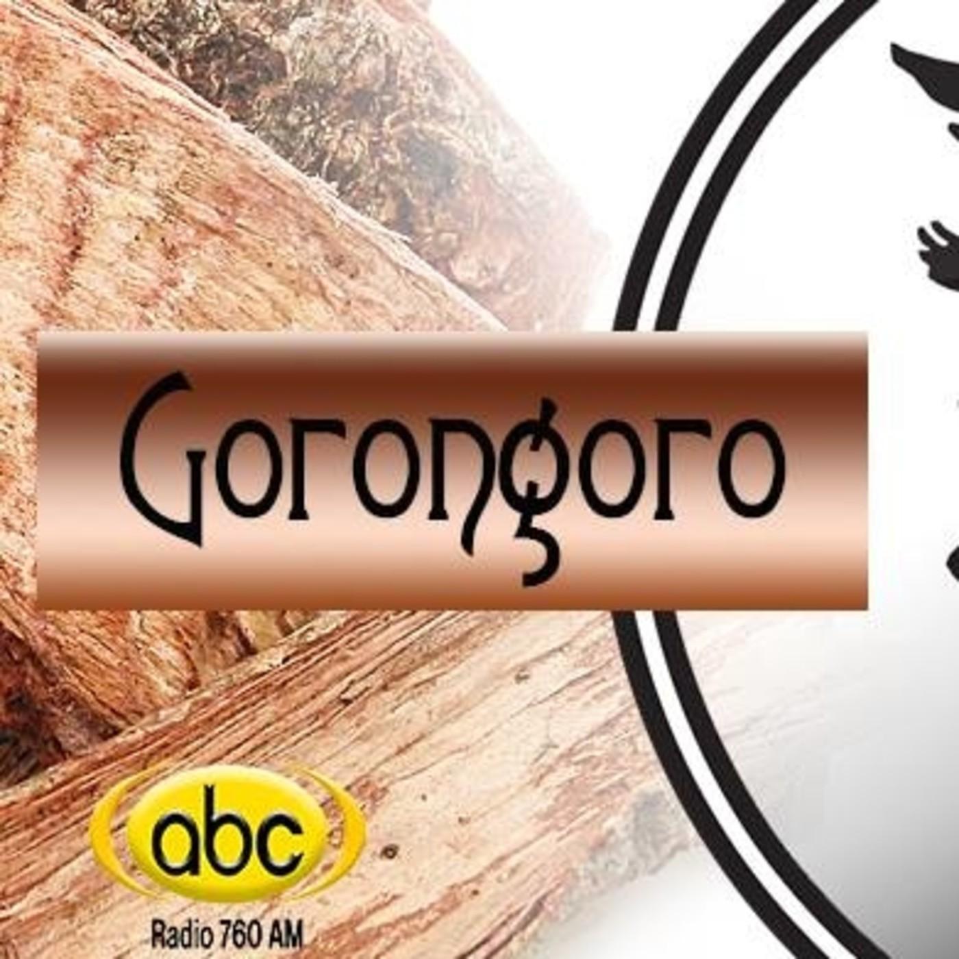 El Ángel de tu Salud - GORONGORO CORTEZA