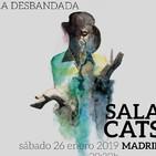 Kike Babas : Directo en la sala Cats