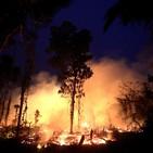 BioBalears 133 - Nueva Temporada y los incendios del Amazonas