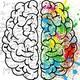 MESA DE ACTUALIDAD: Cómo funciona nuestro cerebro