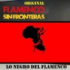 ESPECIALES - Lo negro del Flamenco